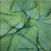 light and dark green abstract alcohol ink painting on canvas. Upclose view of leaves with lighter smaller varied sided dots throughout painting