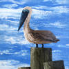 Fluid acrylic painting of a pelican standing a top of a pillar with clouds in the background.