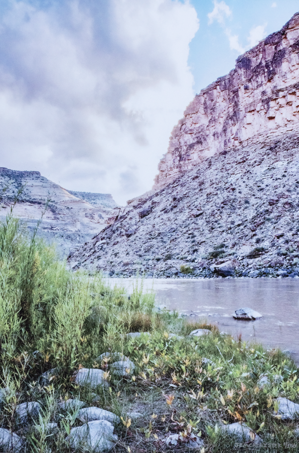 Photo print on metal of the perspective at a grassy shore line looking at the Green River in Utah with a large rocky structor in the background